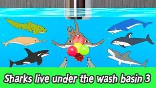 [EN] Sharks live under the wash basin 3, kids animals animation, sharks adventureㅣCoCosToy