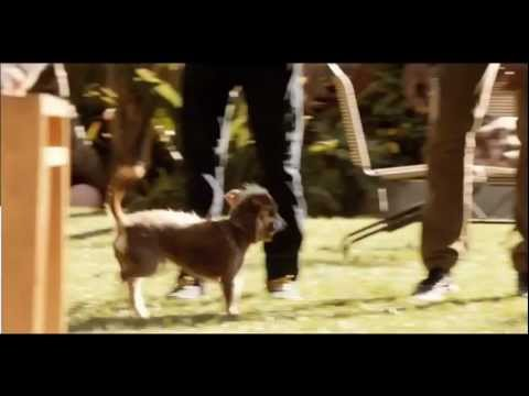 "Bud Light - ""Here We Go"" Rescue Dog (Super Bowl XLVI Commercial)"