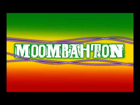 The Moombah Mix 2011 (Moombahton)