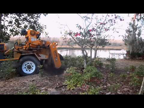 Taylor Tree Co. stump grinding in Kiln, MS