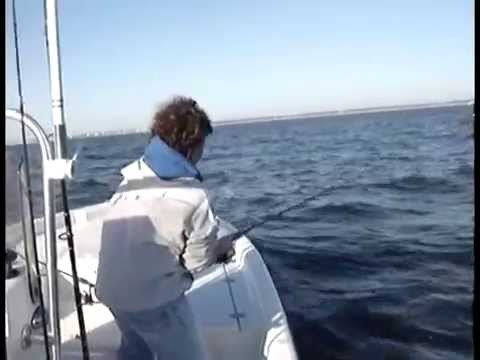 Carolina Beach Fishing VIDEO, Sight casting to Spanish Macks