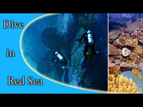 Inna wreck Jeddah Saudi Arabia
