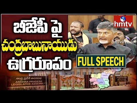 AP CM Chandrababu Naidu Aggressive Speech, Slams BJP | AP Assembly LIVE | hmtv