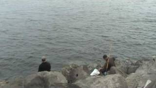Play barview jetty with longliner boat jetty fishing for Jetty fishing oregon