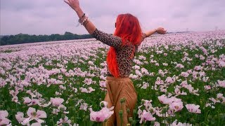 Neon Hitch - Pink Fields