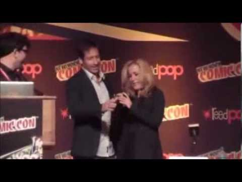 David Duchovny and Gillian Anderson : Best moments on October 2013 at NYC