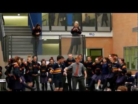 Trinity College Senior - Organ Donation Flash Mob