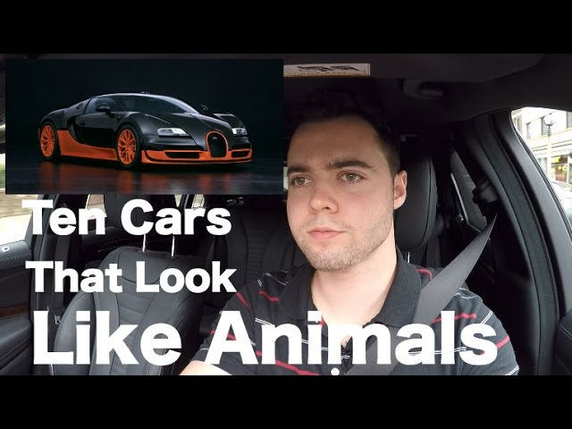 Ten Cars That Look Exactly Like Animals