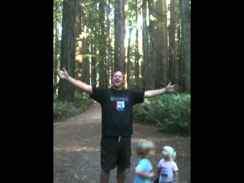 From the Redwood Forest, this land was made for you and me!