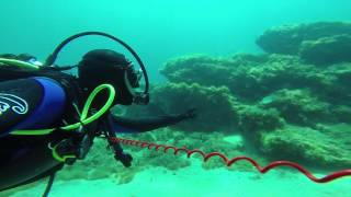 Diving 1 youtube