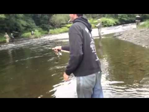 Pulaski new york travel for Best time for salmon fishing in pulaski ny