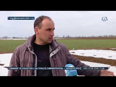 У крымских фермеров горячая пора