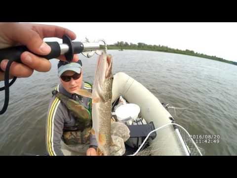на что ловить рыбу на вятке