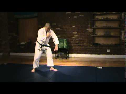 New York City Aikido: Ukemi Waza Basic Standing Front-Roll: Greg Soon Sensei Image 1
