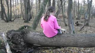 Unofficial music video lindsey Stirling lost girls