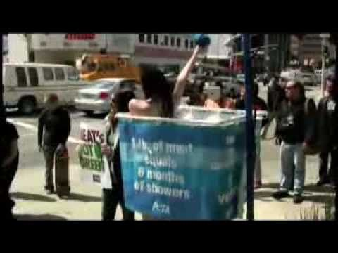 Two Girls Peta Shower Did On A Street In Hollywood video