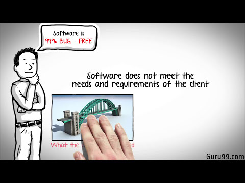 Software Testing Tutorial 2 : Seven Testing Principles