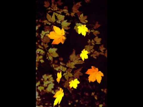 Jules And Jim- Eva Cassidy Autumn Leaves Cover