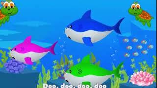 Nhạc thiếu nhi tiếng anh: Baby shark - Kid music english: Baby shark