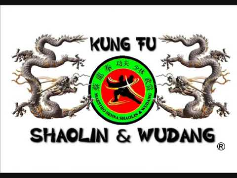 Kung Fu Shaolin  Northern Praying Mantis Little  Master Paty Lee. Image 1