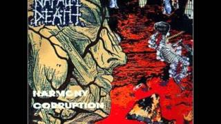 Watch Napalm Death Vision Conquest video