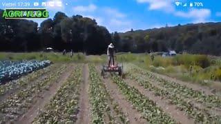 Sáng tạo của người nông dân