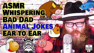 Funny ASMR Bad Dad Jokes - Animal Jokes Whispered Ear to Ear for Relaxation