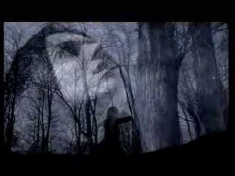 LACUNA COIL - Within Me (OFFICIAL VIDEO)