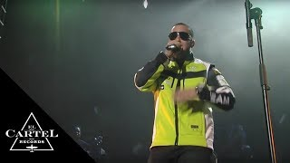 Daddy Yankee - Que Tengo Que Hacer ft Omega [Live]