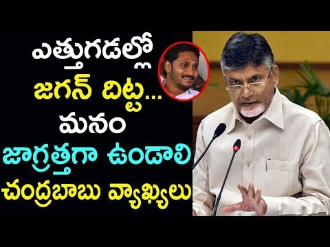 Chandrababu Naidu Comments On YS Jagan Stamina | TDP Vs YSRCP | Tollywood News