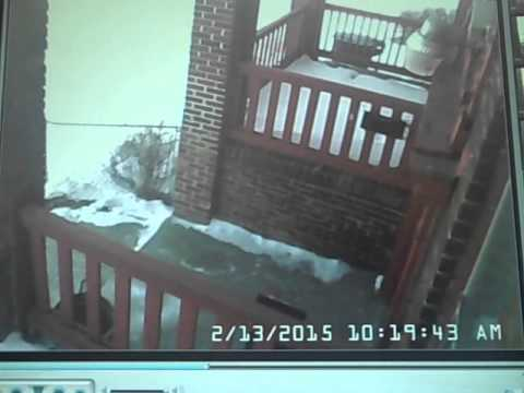 FedEx DRIVER THROWS MY PACAKGE ON PORCH IN SNOW  SHEA SHOW