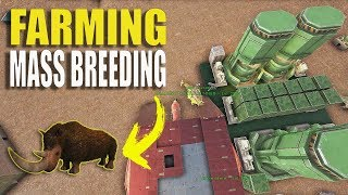 """MASS FARMING MASS BREEDING"" - OFFICIAL SMALL TRIBE SERVERS PVP #11 