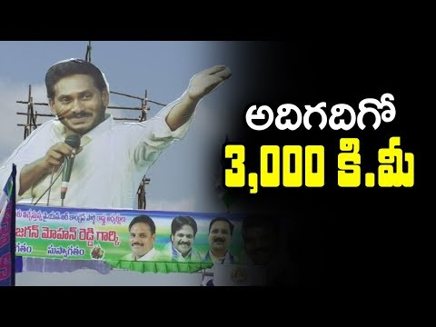 YS Jagan 's 3000 KMS Padayatra Visuals | YSRCP Activists Celebrate Jagan's Success | Indiontvnews