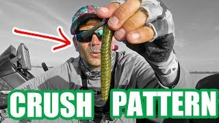 CRUSH spawning bass, PATTERN fishing Lake Okeechobee