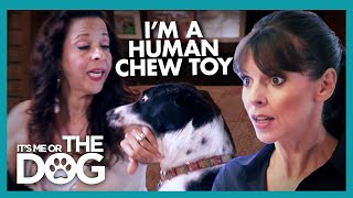 Mother is a Human Chew Toy for Her Dogs | It's Me or the Dog