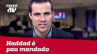 Bolsonaro manda na chapa, Haddad é pau mandado   Felipe Moura Brasil