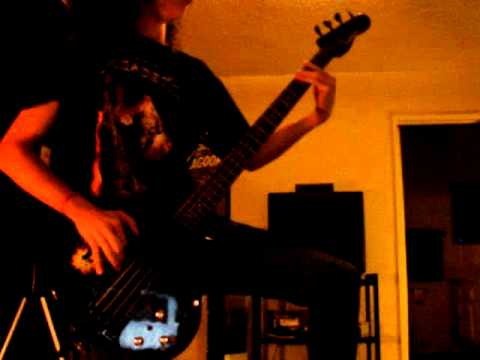 Peace Sells Bass Cover