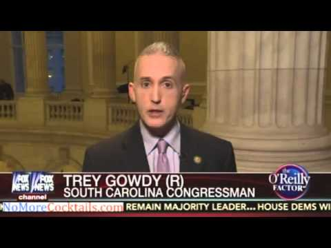 Trey Gowdy on impeaching Obama over immigration -