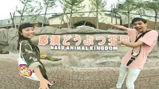 Japan's Animals!! Visiting Nasu Animal Kingdom 那須どうぶつ王国