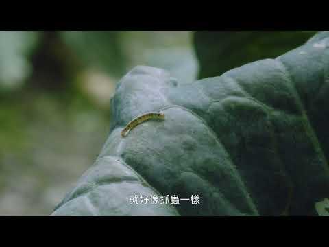 【老農篇】國語 30s