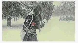 Дельфин-снег.Lady Winter.2010