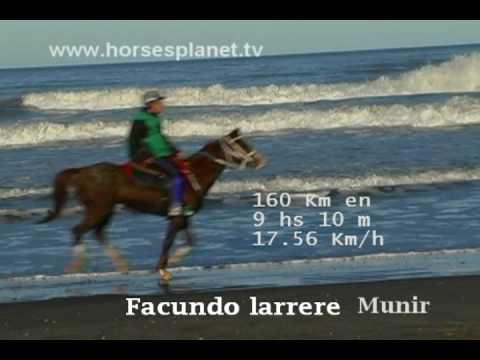 Endurance Pinamar 160 Km