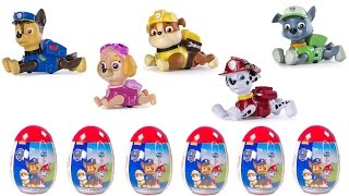 Best Learning Colors Video for Children: Paw Patrol Pull Back Racing Pups Open Surprise Eggs
