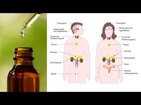 Top 7 Essential Oils to Balance Hormones Naturally thumbnail