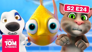 Talking Tom and Friends - Fishy Business | Season 2 Episode 24