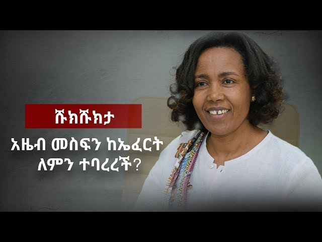 Shukshukta - The Downfall of Azeb Mesfin