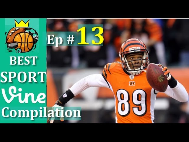 Best Sports Vines Compilation 2015 - Ep #13 || w/ TITLE & Beat Drop in Vines