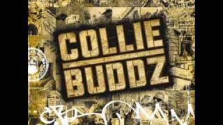 Collie Buddz Collie Buddz Come Around Hq