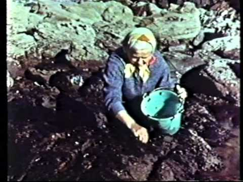 Pembrokeshire Pembs Dyfed 1958 Promotional Video made by Esso Refinery