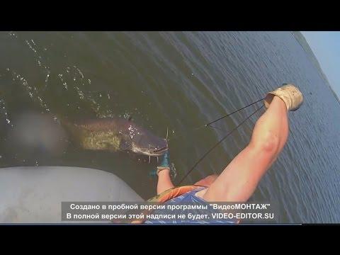 рыбалка на сома видео переметы видео